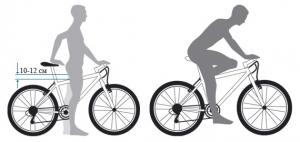 Как подобрать велосипед по размеру