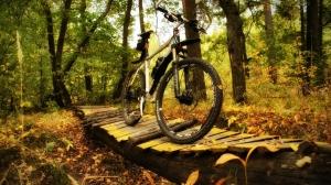 Велопрокат «Драйв»