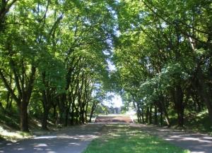 Парк Богдана Хмельницкого