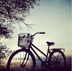 Велосипед проката