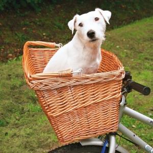 Перевозка домашних животных в корзине