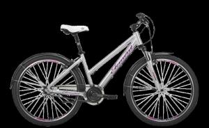 Городской вариант модели велосипеда